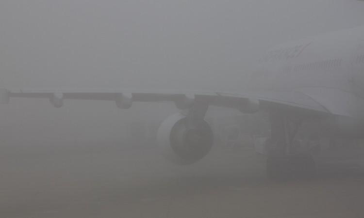 Jour de brouillard 2011 - Muriel Marchais